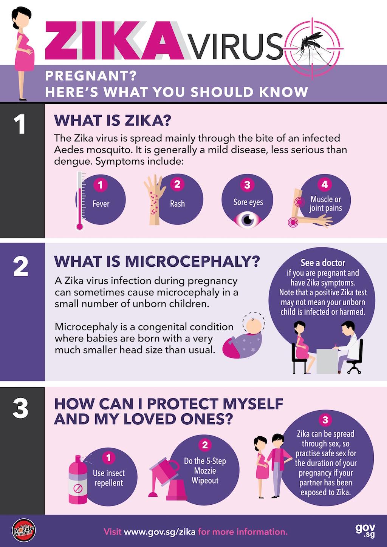 Zika Pregnancy Advisory copy