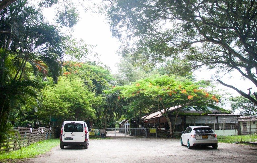 The Animal Resort - carpark