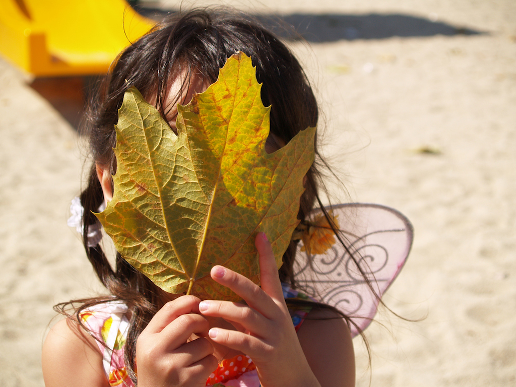 Girl hiding her face with yellow maple tree leave
