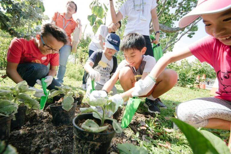 June school holidays - garden troopers