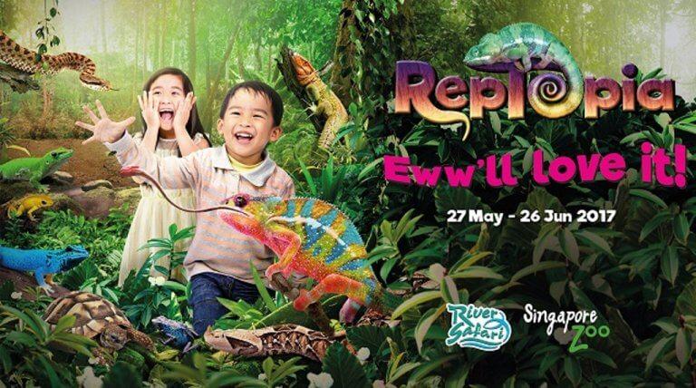 June school holidays - zoo