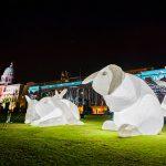 Civic District Outdoor Festival -intrude bunnies