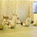 martial arts for kids - aikiforest