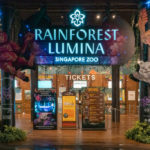 Rainforest Lumina at the Singapore Zoo