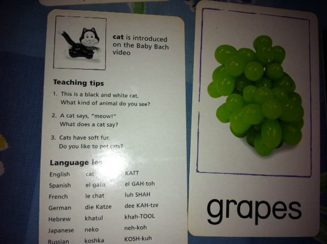 WTB baby flashcards or education stuff at cheap price. BN ...
